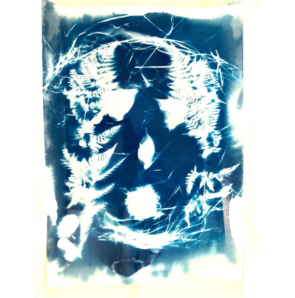 Vernisáž výstavy Veroniky Bromové DIVNÝ JARO, řečí přírody v kruhu koruny